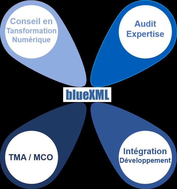 Activités BlueXML