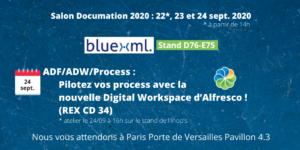 documation-2020-digital-workplace - bluexml expert ECM GED BPM Archivage Signature électronique